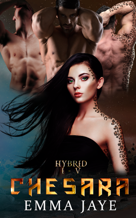hybrid-ebook-cover