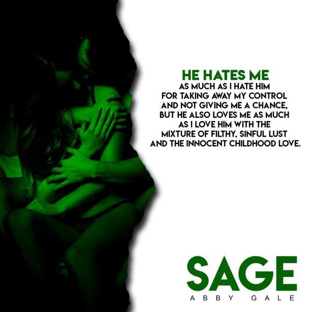 Sage Teaser 6_preview